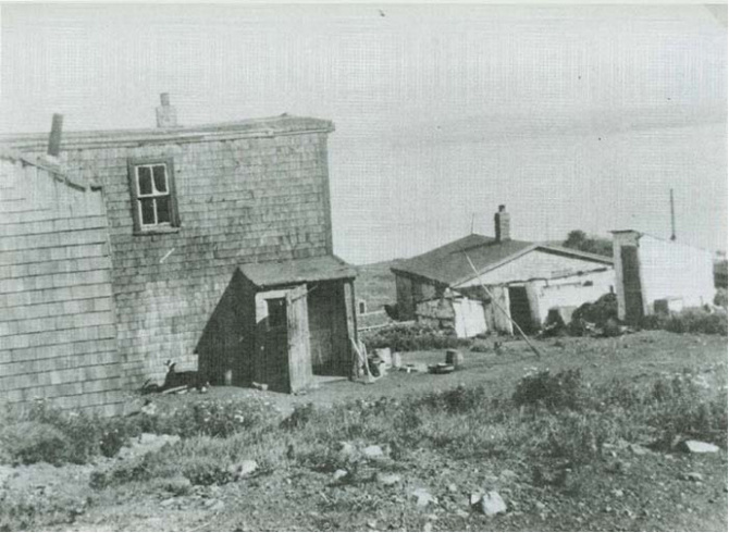 Africville Canada S Secret Racist History Vice Canada