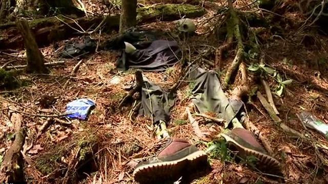 Šuma samoubica