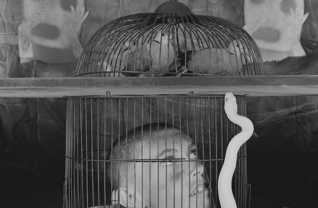 Caged, 2011. # 6123.jpg