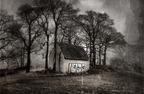 Hans_Borghorst_Bild5.jpg