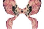 7- Lungbutterfly.jpg