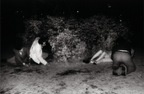 33_Untitled, 1971.jpg