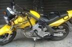 1237043_387063064752780_742403581_n.jpg