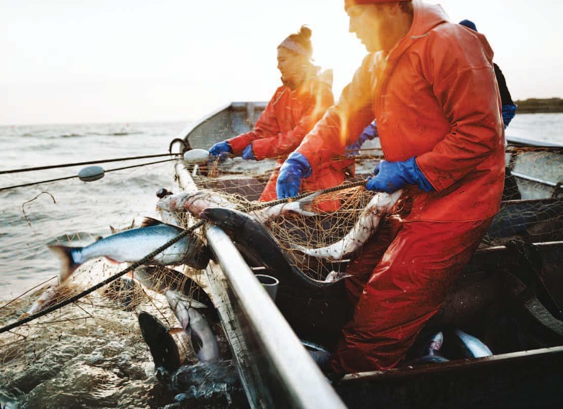 image Sé que eres adicta a las mujeres en redes de pesca joi